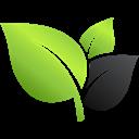 Vegetační úpravy sřech