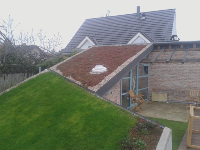 Přírodní  střecha